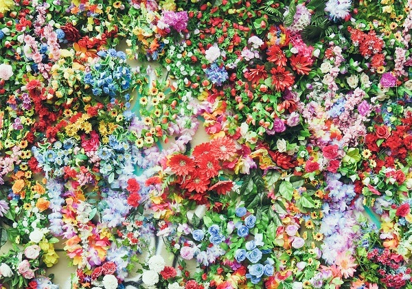 Loài hoa bạn yêu thích nhất là gì?