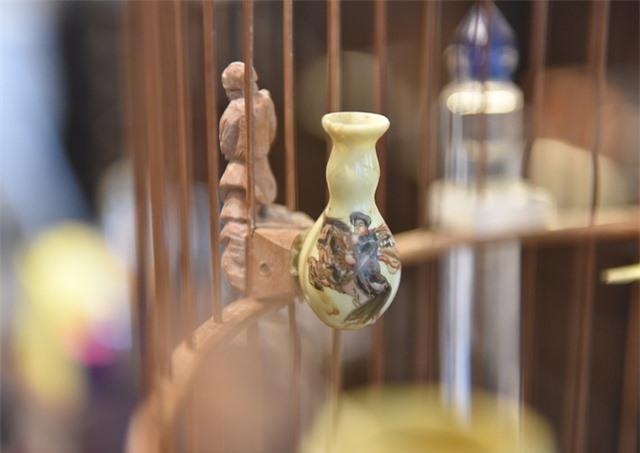 Mãn nhãn với bộ sưu tập chim quý hiếm, giá khủng của vua chim màu Việt - 10