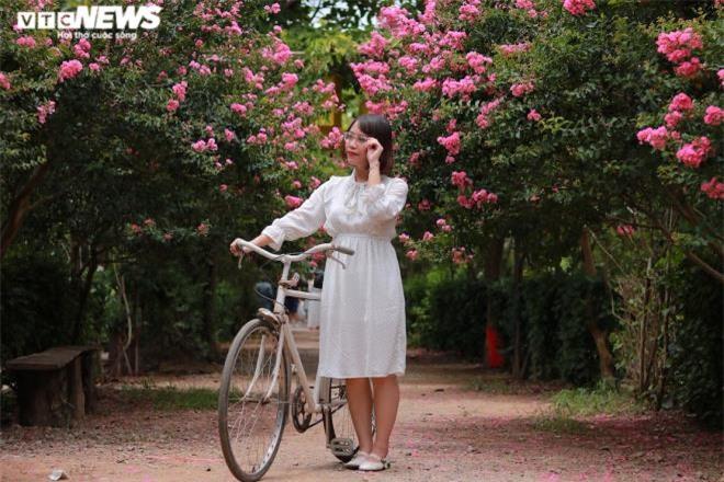 Ảnh: Con đường rực rỡ hoa tường vi như vườn cổ tích ở Hà Nội - 11