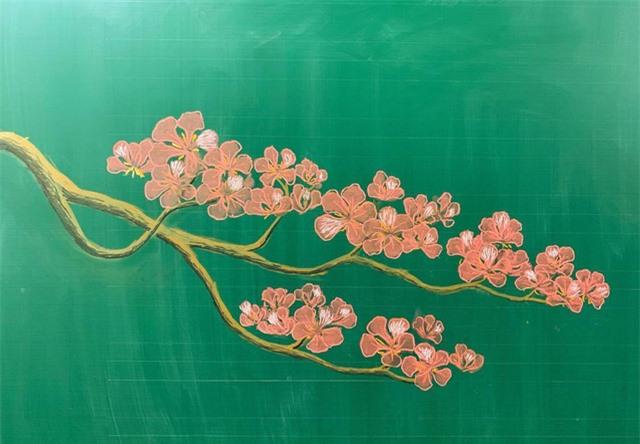 Thầy giáo 9X vẽ hoa phượng trên bảng phấn gây sốt cộng đồng mạng - Ảnh 8.