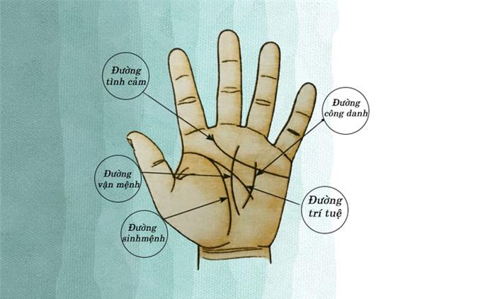 Kí tự chữ M trên lòng bàn tay sẽ tiết lộ những sự thật thú vị về bạn - Ảnh 1.