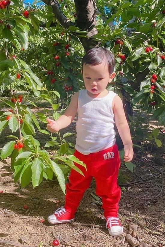 Maximus cũng thích ra vườn, tưới nước, hái trái cây cùng mẹ.