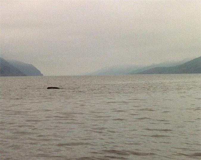 bức ảnh giả về quái vật hồ Loch Ness