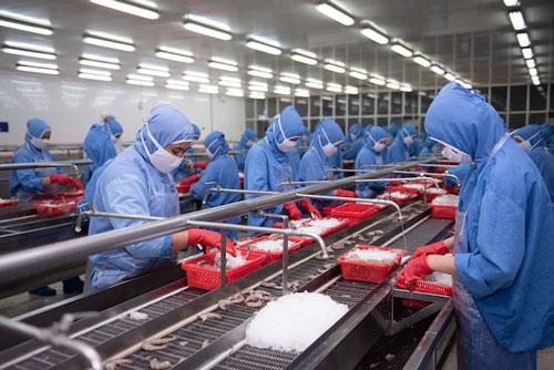 Việc nâng chất nông lâm thuỷ sản Việt XK vào EU bằng nhãn mác Việt là rất cần thiết trong lúc này