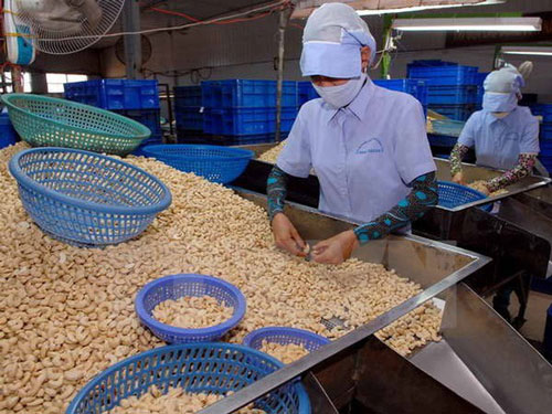 Nông nghiệp được xem là lĩnh vực có nhiều lợi thế khi Hiệp định EVFTA có hiệu lực