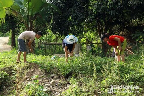 Hàng ngày, để giữ gìn vệ sinh, người dân thay nhau cuốc cỏ, quét dọn xung quanh giếng. Ảnh: Đình Tuân.