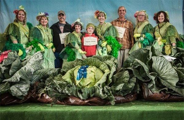 Tròn mắt trước những loại rau củ quả khổng lồ ở Alaska và lý giải cho điều lạ lùng này - Ảnh 2.