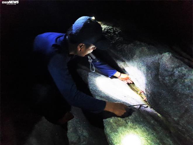 Trắng đêm theo chân thợ săn cua đá trên đảo Cù Lao Chàm - 2
