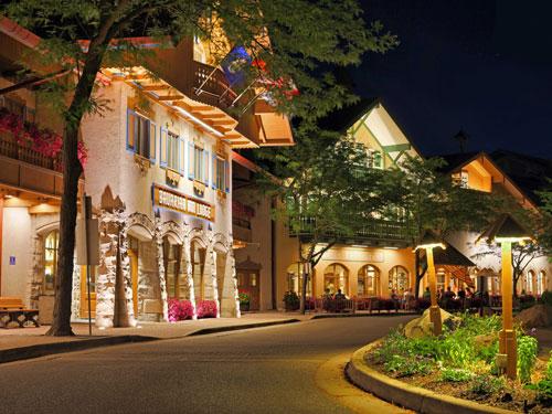 Frankenmuth, Michigan, nổi tiếng với kiến trúc theo phong cách Bavaria. Đây cũng là nơi có cửa hàng Giáng sinh lớn nhất thế giới, 'Christmas Wonderland', mở cửa từ năm 1945, thu hút hơn 2 triệu khách đến tham quan mỗi năm vì sự lộng lẫy như thiên đường cổ tích của mình.
