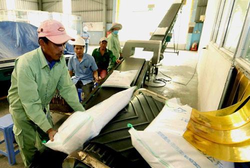 Chưa kịp vượt Thái Lan, xuất khẩu gạo đã 'đói' đơn hàng