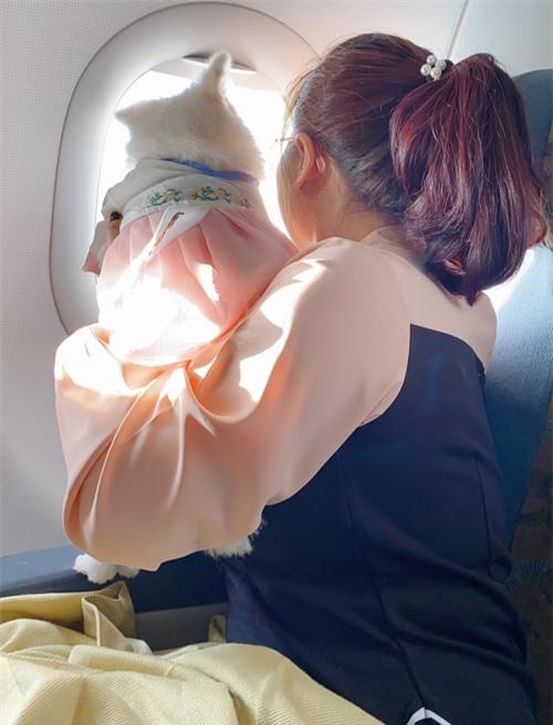 Khi ngồi máy bay cô còn cho chúng nhìn ra cửa sổ ngắm cảnh mây trời như người.