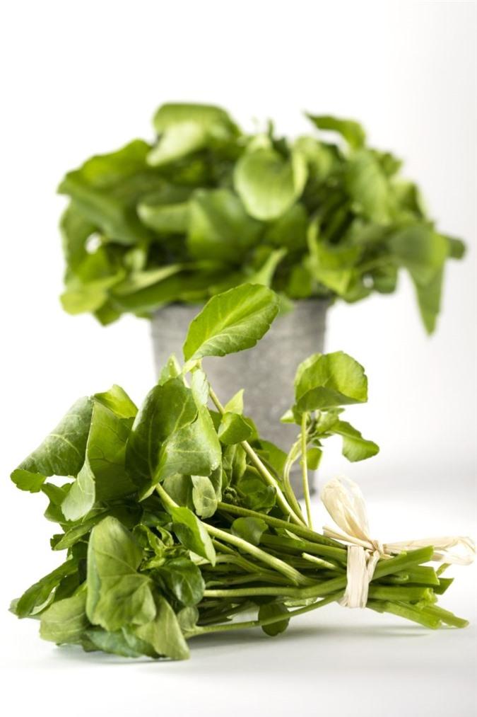 Trồng 'siêu thực phẩm' rau mầm cải xoong ngừa ung thư - 1