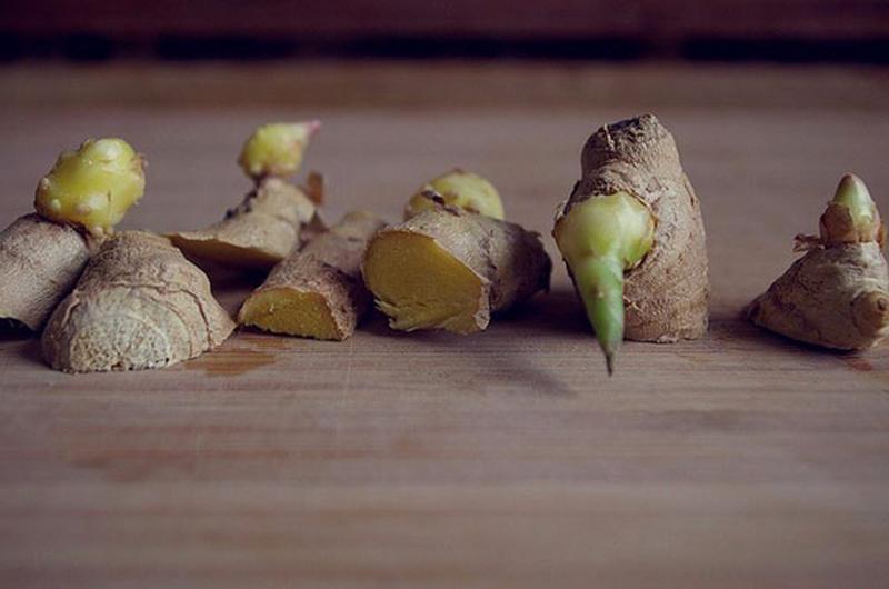 4 loại rau độc nhất thế giới, ăn vào có thể ung thư gan nhưng nhiều người vẫn dùng