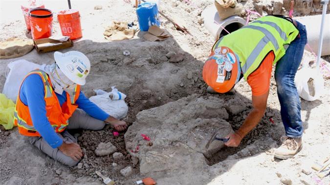 Thành phố rùng rợn: đào đường, 3 lần lọt vào mộ phần quái thú - Ảnh 1.