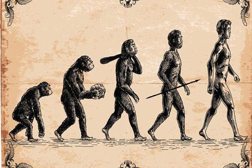 Bức vẽ nổi tiếng mang tên The March Of Progress mô tả quá trình tiến hóa của con người. Ảnh: Getty.