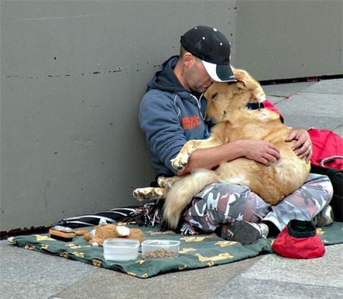 Bật khóc trước những giây phút cảm động của loài vật không bao giờ chê chủ nghèo khó - 4