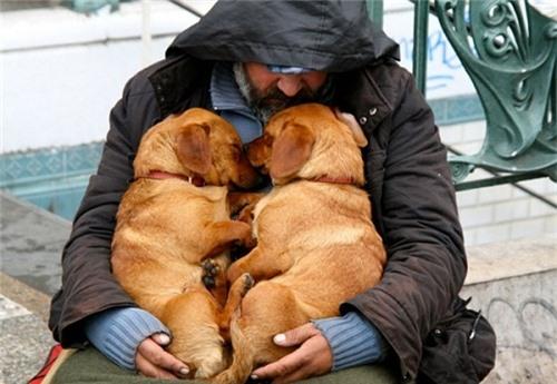 Bật khóc trước những giây phút cảm động của loài vật không bao giờ chê chủ nghèo khó - 7