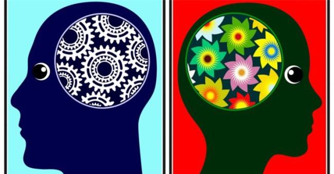 Não của phụ nữ lão hóa chậm hơn đàn ông - 2