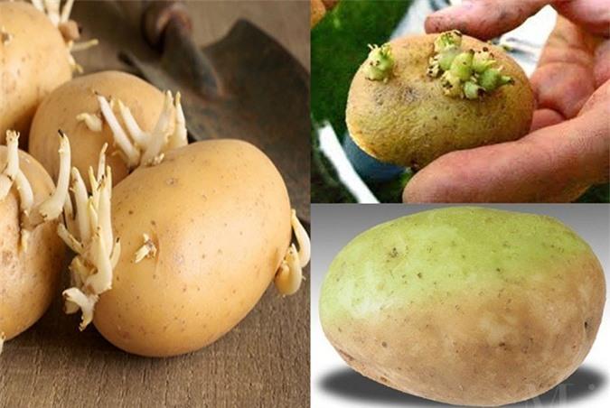 Khoai tây nảy mầm ăn vào ngộ độc nhập viện tức thì