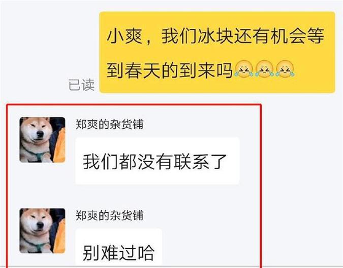 Trịnh Sảng - Trương Hàn nói gì về tin tức 'yêu lại từ đầu' sau 6 năm muôn trùng cách biệt? - Ảnh 3