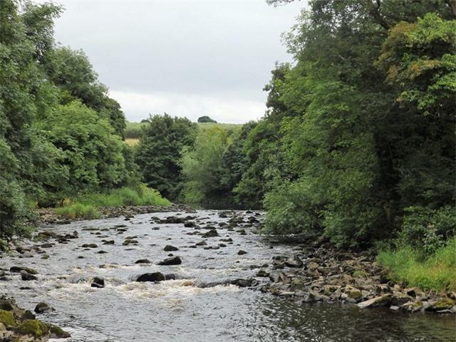 5 dòng sông ngắn nhất thế giới - 4