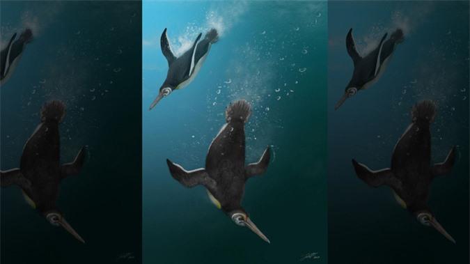 Bí ẩn sinh vật ra đời vào ngày thiên thạch tiêu diệt hết khủng long - Ảnh 1.