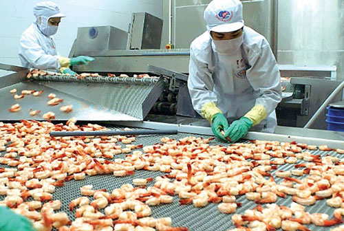Mỗi tháng ngành thủy sản phải xuất khẩu hơn 1 tỷ USD mới đạt mục tiêu cả năm 10 tỷ USD