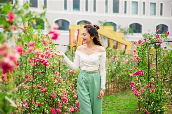 Du khách check-in thung lũng hoa hồng lớn nhất Việt Nam