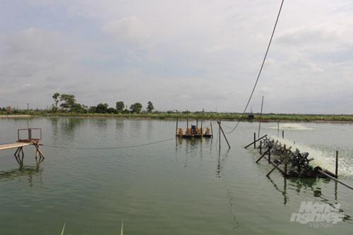 Trang trại nuôi trồng thủy sản của gia đình ông Năm rộng đến 6ha, trong đó có 5ha diện tích mặt nước. Ảnh: Mai Chiến.