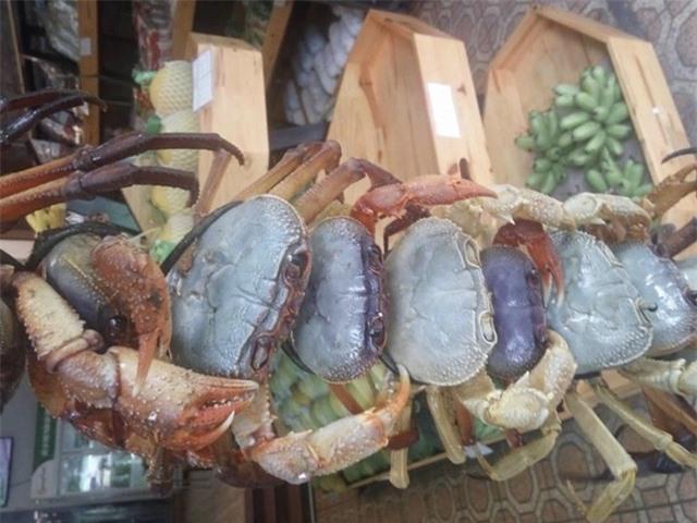 Chán cua biển, cua đồng, giới nội trợ lùng mua cua đá núi - 2