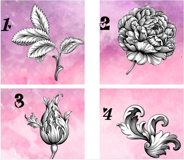 Bạn chọn bông hoa nào?