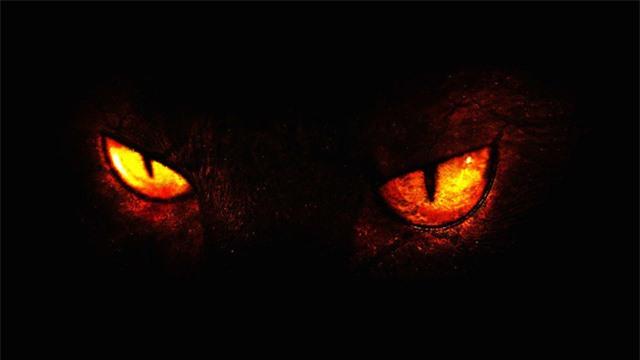 Những câu chuyện kinh dị: Hồn ma động vật quay về ám ảnh người sống - Ảnh 2.