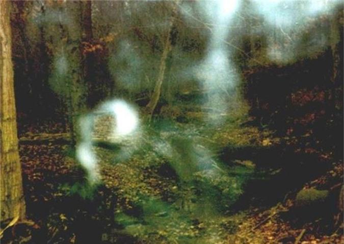 Hồn ma phù thủy Bell ở thị trấn Adams, hạt Roberson, bang Tennessee.