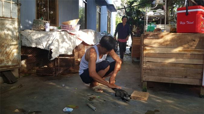 Nhiều hộ dân ở xã Xuân Sơn Bắc, huyện Đồng Xuân, tỉnh Phú Yên nuôi chồn hương hiệu quả. Ảnh: KS.