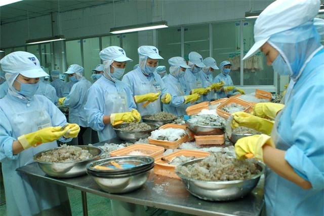 EVFTA là cơ hội khôi phục xuất khẩu hàng Việt sau đại dịch - Ảnh 1.