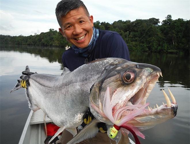 Top 'thủy quái' nước ngọt nguy hiểm nhất hành tinh