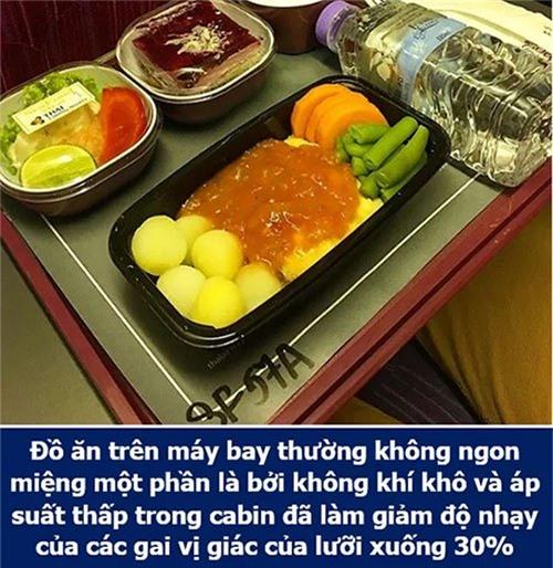 Đồ ăn trên máy bay