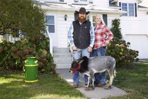 Humphrey - chú bò nhỏ nhất thế giới, cao 67,6cm