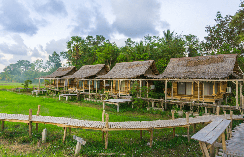 Cần xử lý mạnh tay người phân lô đất nông nghiệp xây dựng cơ sở lưu trú du lịch.