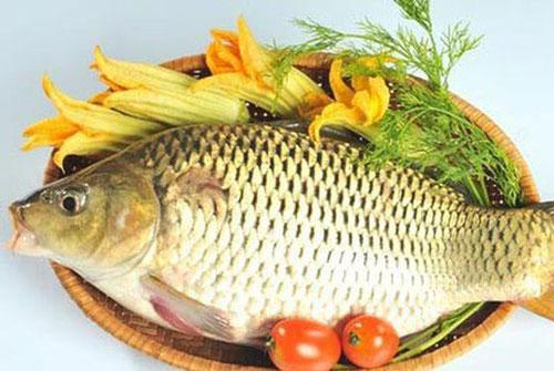 Món ăn từ cá chép 'đại kỵ' với người mắc bệnh gì?