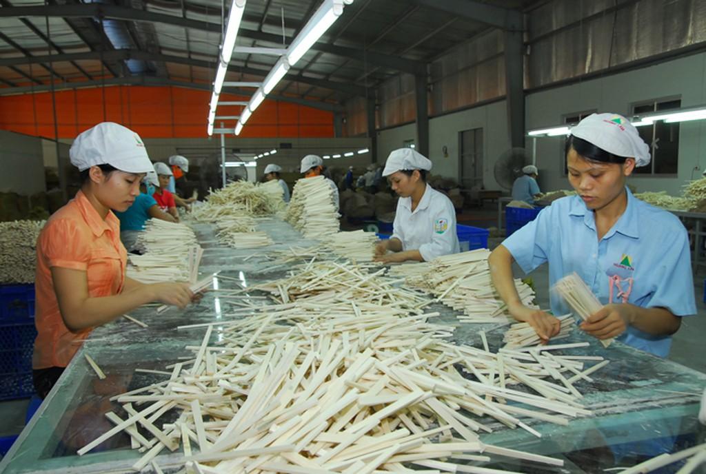 hỗ trợ tìm nguồn nguyên liệu mới, tìm thị trường xuất khẩu, xúc tiến thương mại, hỗ trợ đào tạo nghề