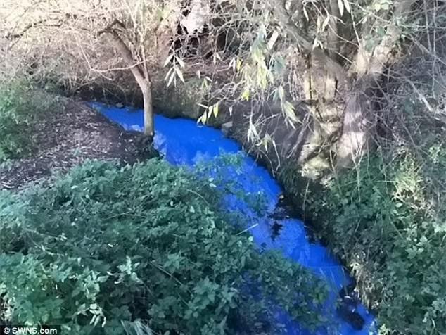 Sự biến đổi kỳ lạ của dòng sông khiến giới chuyên gia 'đau đầu' giải mã