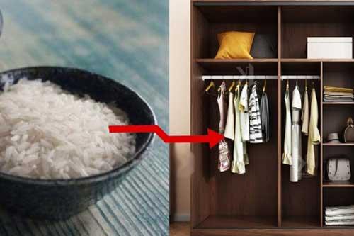 Vợ học hàng xóm đặt bát gạo vào tủ quần áo, sáng dậy thấy ngỡ ngàng khi nhìn kết quả