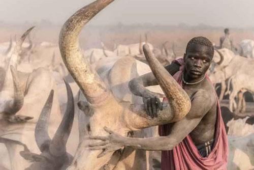 Cuộc sống ở bộ tộc dùng nước tiểu và phân bò để tắm gội, làm đẹp