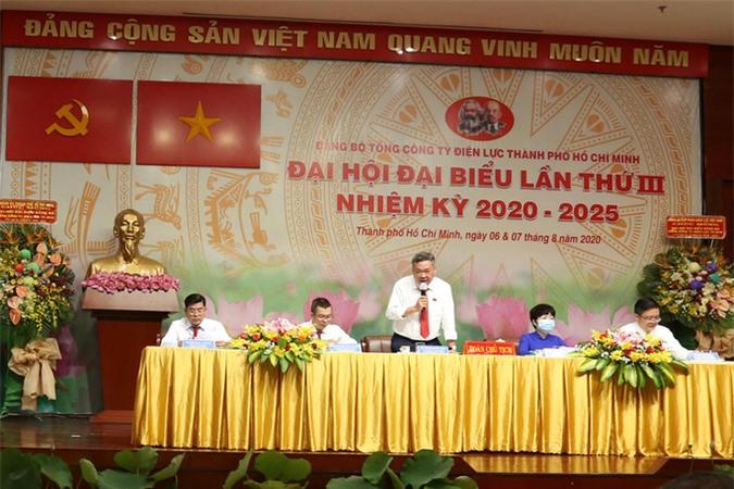 Ông Phạm Quốc Bảo tái đắc cử Bì thư Đảng ủy Tổng công ty Điện lực TP HCM - Ảnh 1.