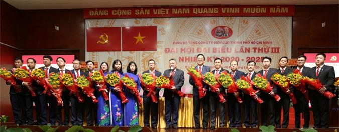 Ông Phạm Quốc Bảo tái đắc cử Bì thư Đảng ủy Tổng công ty Điện lực TP HCM - Ảnh 2.