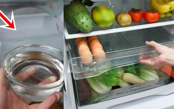 Đặt bát nước vào tủ lạnh tiết kiệm điện