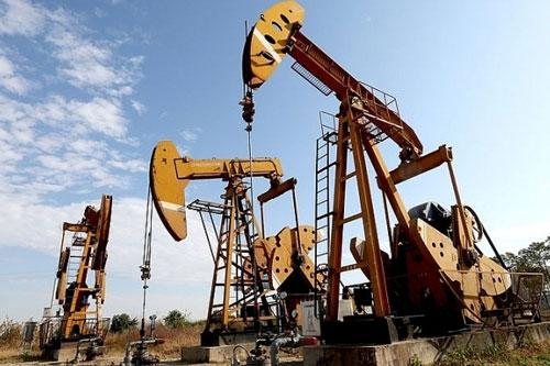 Giá xăng, dầu (13/8): Giảm nhẹ