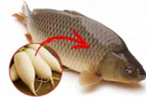 Mẹo đánh vảy cá bằng củ cải vừa nhanh vừa an toàn