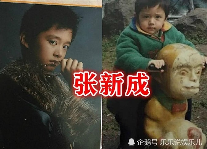 Vẻ đáng yêu của Trương Tân Thành lúc nhỏ.